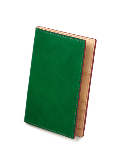 Passport Case - green