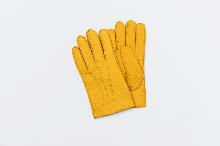 omega gloves Peccary Yellow (남성용)